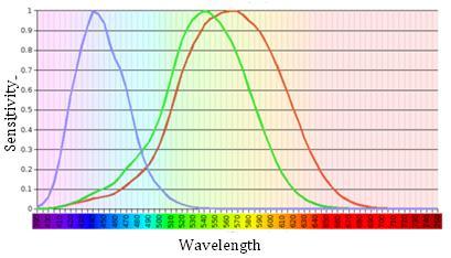 Colour perception graphic